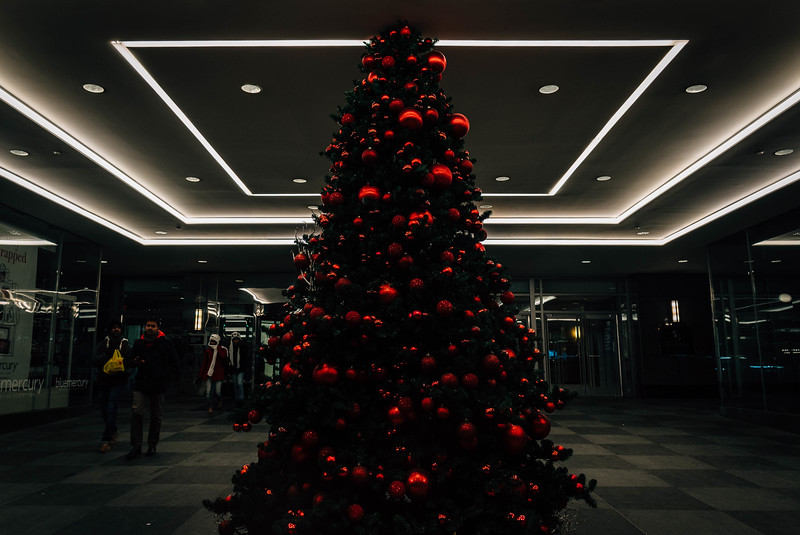 Tree at Hilton Midtown entrance.jpg