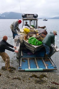 Time For Offloading - Vertical April 2013, Cynthia Meyer, Chichagof Island, Alaska