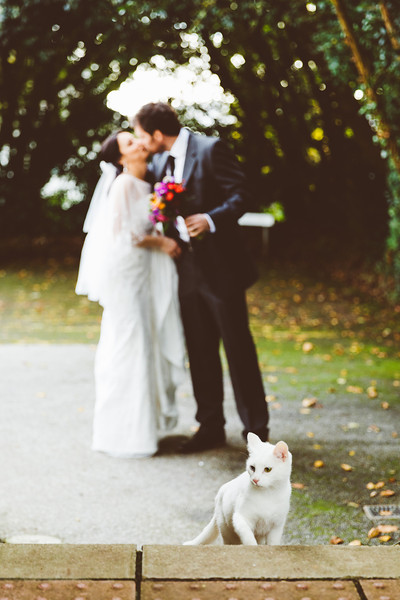 047-M&C-Wedding-Penzance.jpg