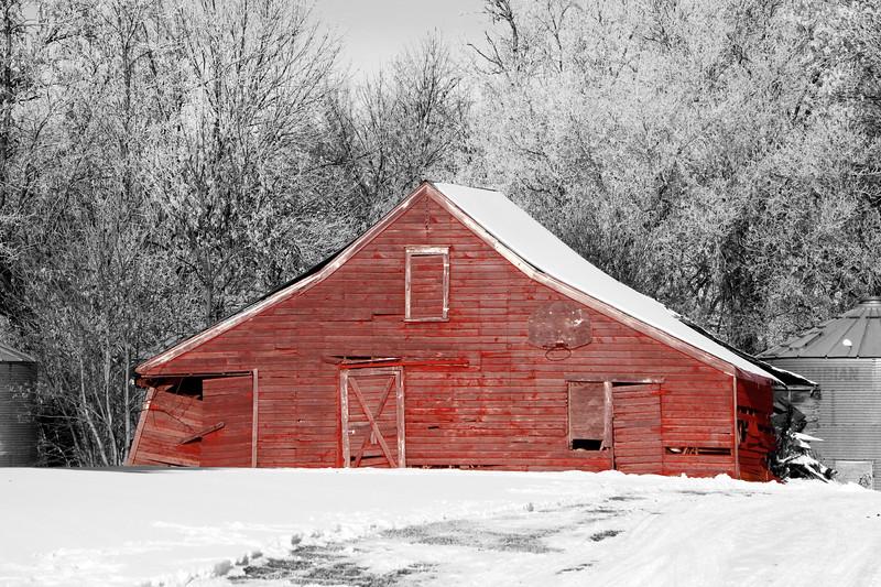 Winter Wonders 16.jpg