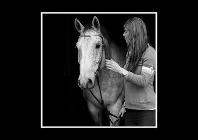 Linn C-med hästar