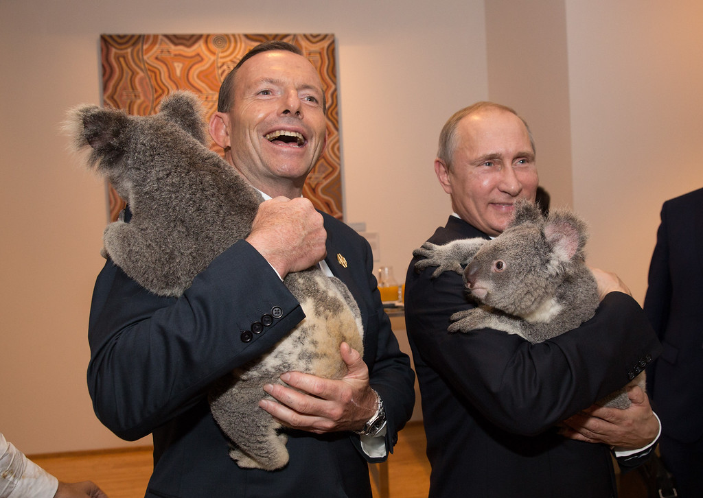 . BRISBANE, AUSTRALIA - NOVEMBER 15: Australia\'s Prime Minister Tony Abbott and Russia\'s President Vladimir Putin meet Jimbelung the koala before the start of the first G20 meeting on November 15, 2014 in Brisbane, Australia. World leaders have gathered in Brisbane for the annual G20 Summit and are expected to discuss economic growth, free trade and climate change as well as pressing issues including the situation in Ukraine and the Ebola crisis.  (Photo by Andrew Taylor/G20 Australia via Getty Images)