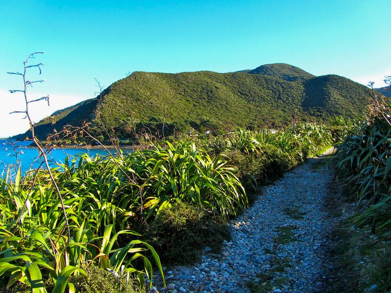 Kapiti Island in New Zealand