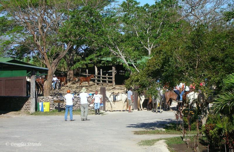 308-0833-Guanacaste-Stables.jpg