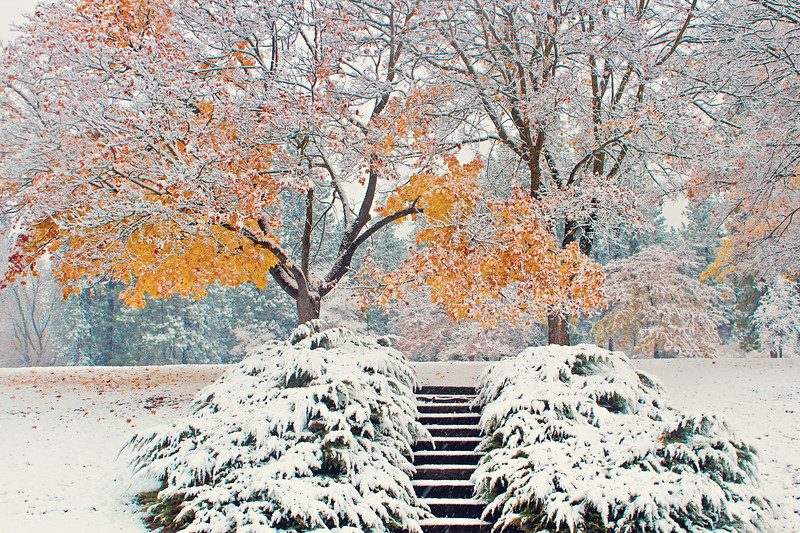 Fall Snow Magic at Minnehaha....
