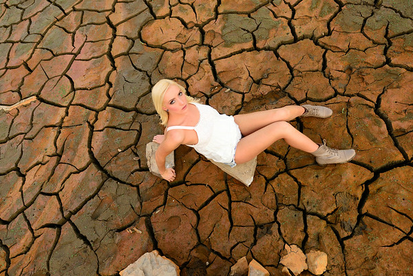 Heather in the cracked mud
