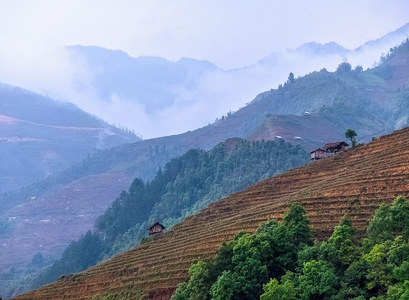 Vietnam Mu Cang Chai_P1100773.jpg