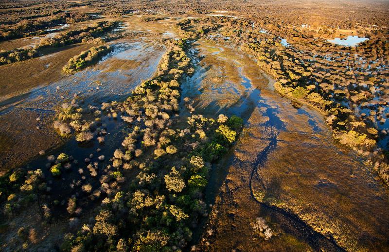 Africa (7) - David Speltdoorn.jpg