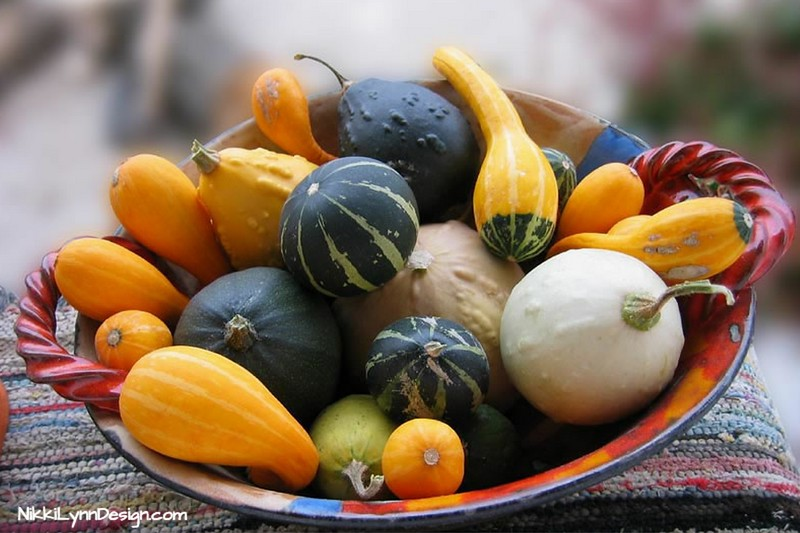 Easy table centerpiece for fall.  A bowl full of gourds.