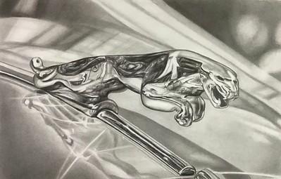 """""""Jaguar"""" (graphite on paper) by Elizabeth Dillman"""