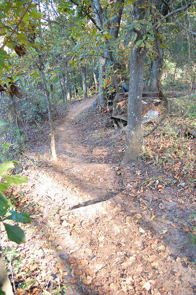 """As we drop off into this section, we'll begin to see the cars for which the trail got its name. Actually, there's not a Cadillac out here. No one wanted to rename it the """"Ford Trail."""""""