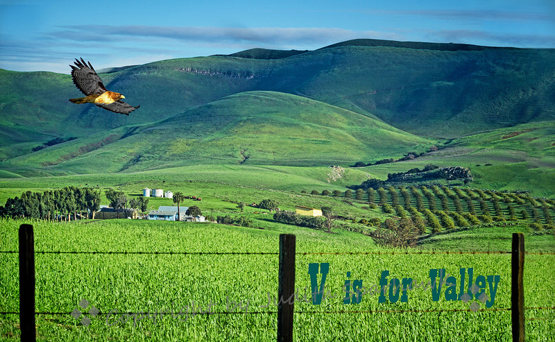 V is for Valley