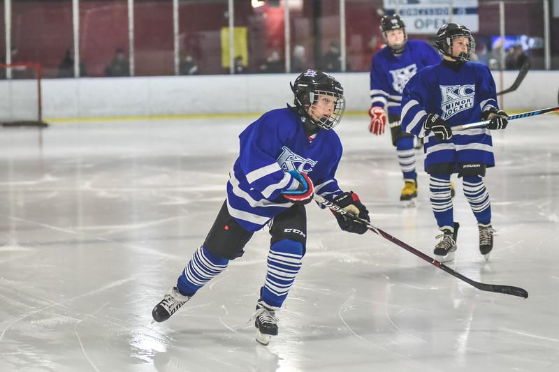 Leafs-102.jpg