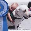 National Service Dog Award-Moval1