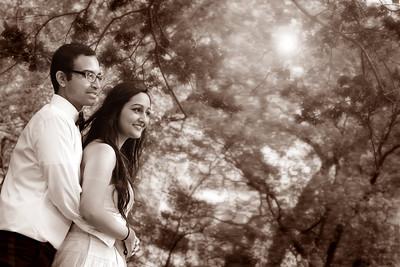 Priya & Swapnil Pre Wedding Photos