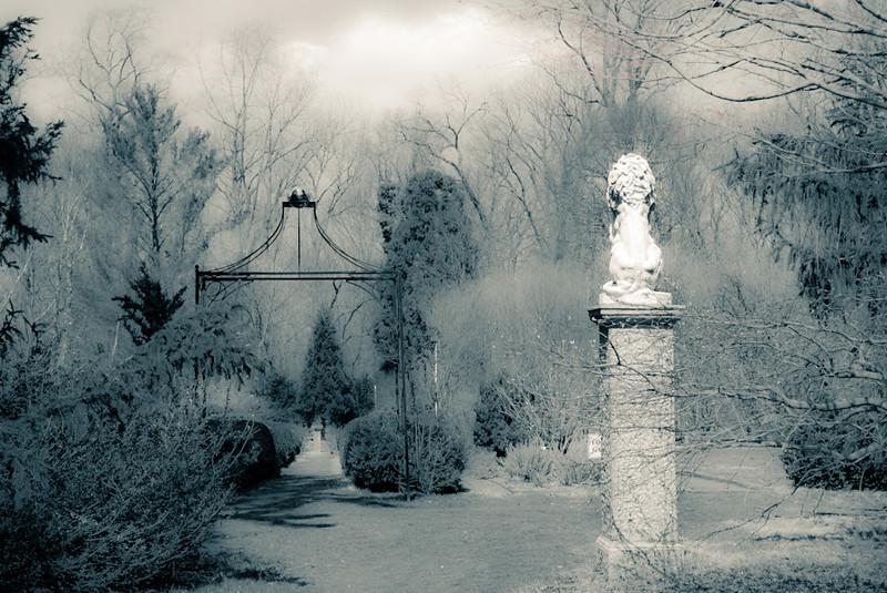 """""""The Garden in My Dreams"""" by A.E. Amador"""