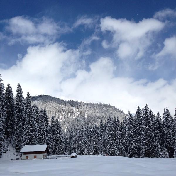 4_Gichner_Snowy Landscape.JPG