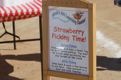 Strawberry Fields 2014