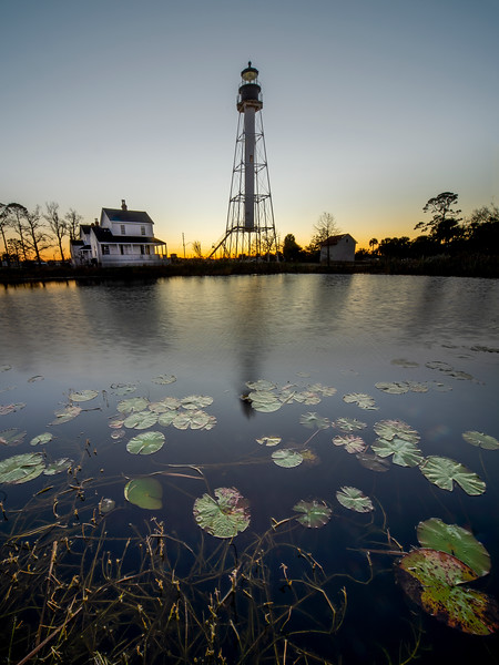 Lighthouse and Lilypads in Port St. Joe