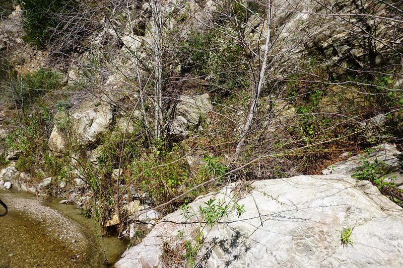 20160218103-Gabrielino Trail Scouting.JPG
