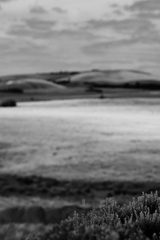 365-kilkunda-_U8T2502-alexandergardner-20110103