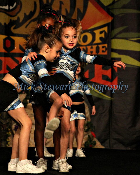 Shooting Stars - Raleigh 2011