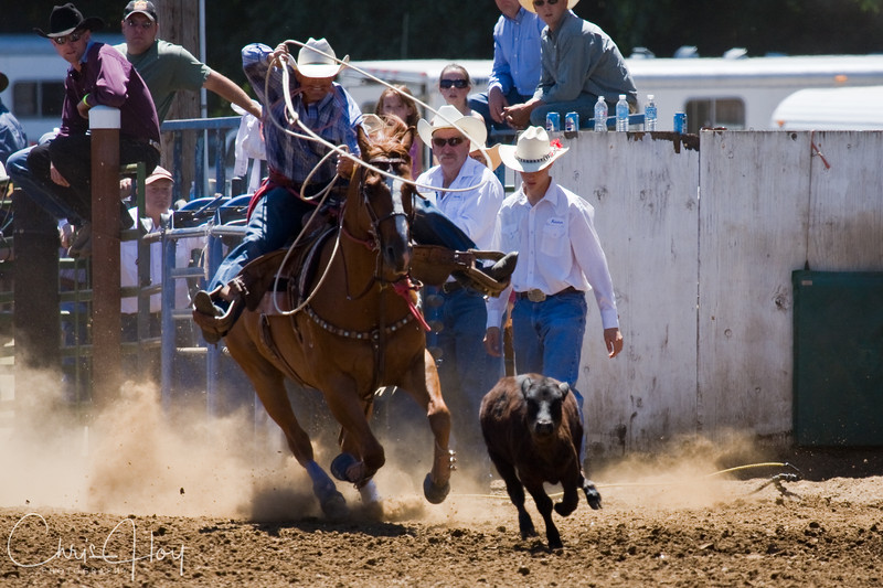 Philomath Frolic & Rodeo 2008