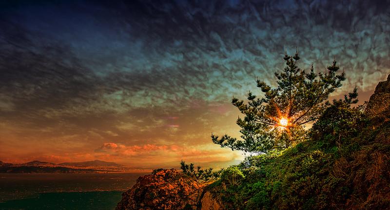sunsetCalf..jpg