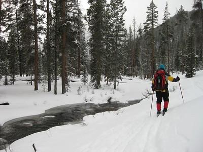Specimen Crk Ski Dec10