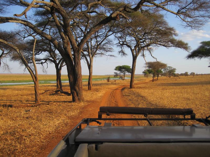 Tanzania14-3229.jpg