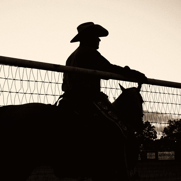 2012-06-16 Cowboy waiting in ring DSC1157.jpg