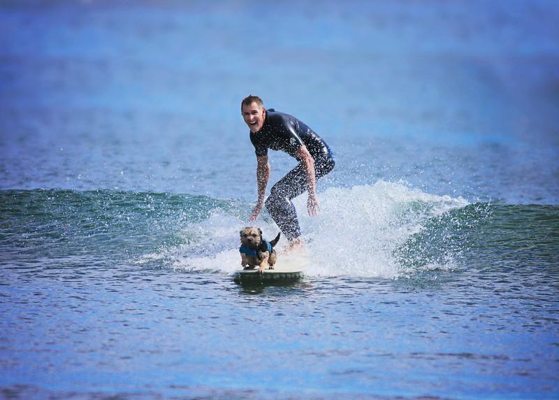 surfplay3a.jpg
