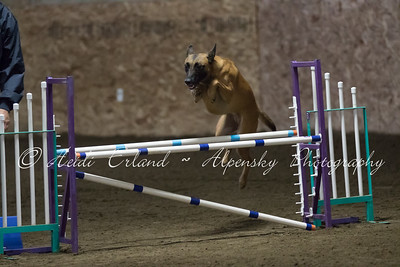 Jumpers Novice R1 - 10/31/15