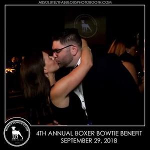 4th Annual Boxer Bowtie Club Gala