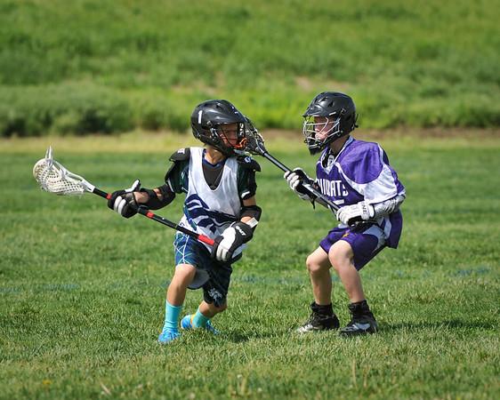 Junior Mustang Lacrosse May 2014
