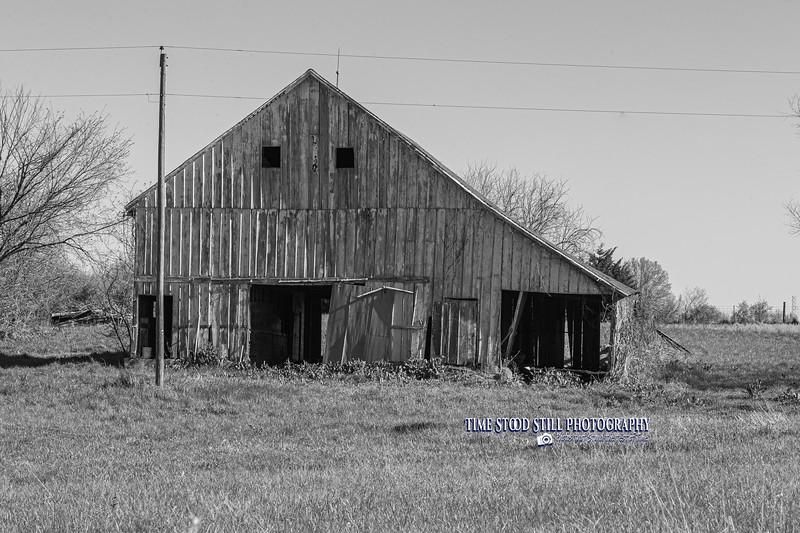 KC Landscape-74.jpg