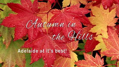 Adelaide Hills in Autumn Run - Wed 12 Apr 2017