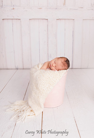 Lily: 14 Days New