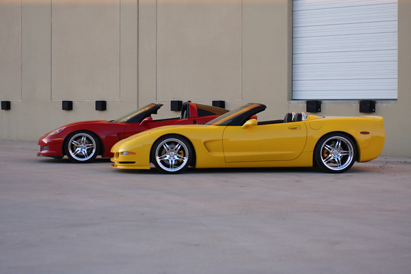 Two Vettes