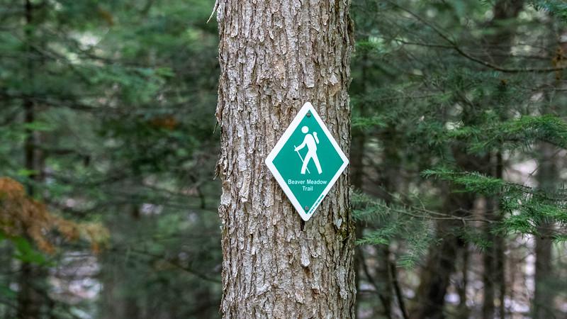 Arrowhead-Provincial-Park15.jpg