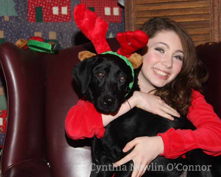 emily and dogs christmas cards 025-2.JPG