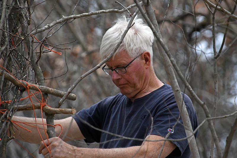 Artist Patrick Dougherty works on the installation of his latest sculpture.