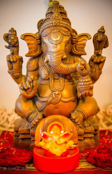 Jay Pooja Mehandi-243.jpg