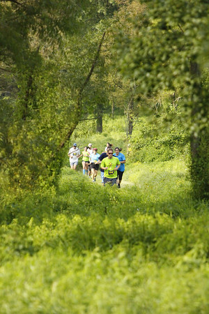 Comus Run Cross Country (XC) 2013