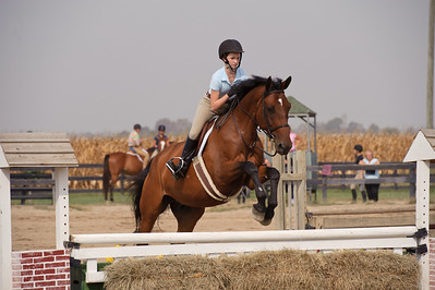 Horse Shows 2010