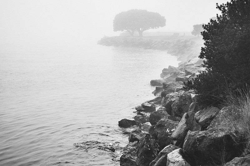 Foggy morning along Alki Beach