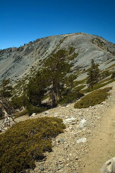 Mt. Baldy, CA