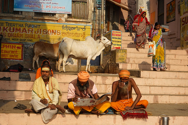 Dic 2018 - Varanasi (1)
