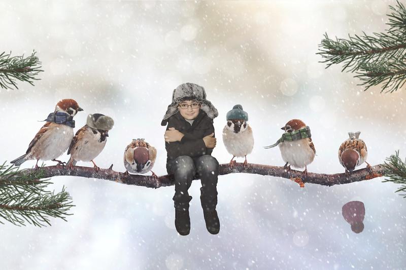 Derek Birds Branch 5 FULL SIZE EDIT.jpg
