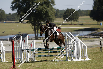 AlexandraGreen&Fernhill Cubalawn41!